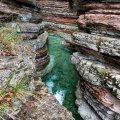 Canyon Brent de l'Art