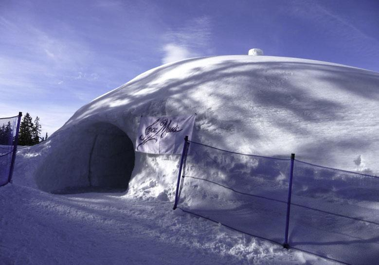 IceMusic Igloo Tim Linhart