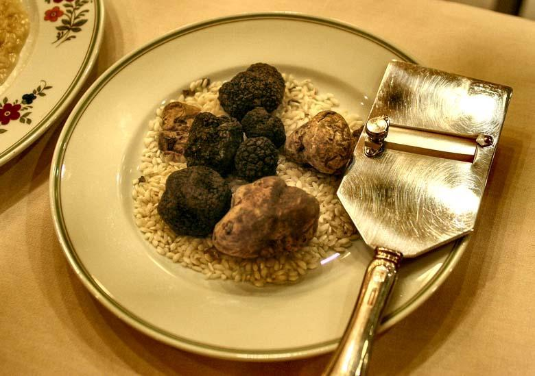 Canva Photo of Truffles on the Plate