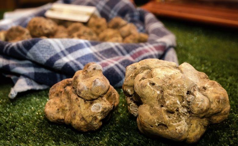 Truffels kopen, eten en zoeken: onze aanbevolen adresjes