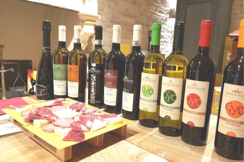 Casa Castignano, vakantiehuis en wijnen uit Piceno