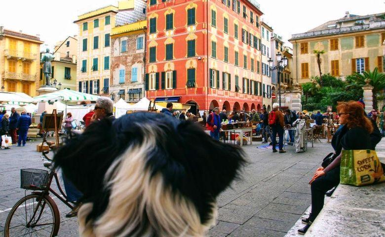 eBook Vlooienmarkten in Italie