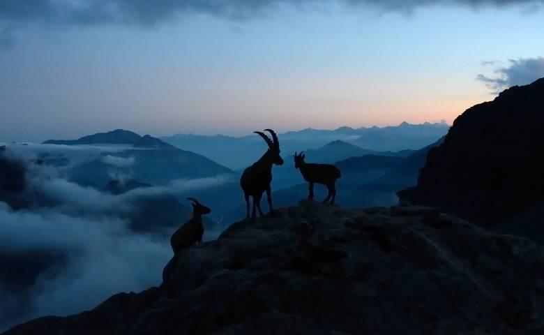 Parco Nazionale del Gran Paradiso, Val D'Aosta
