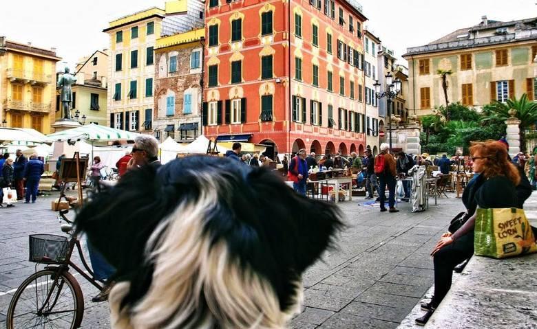 Hond mee op vakantie naar Italie?