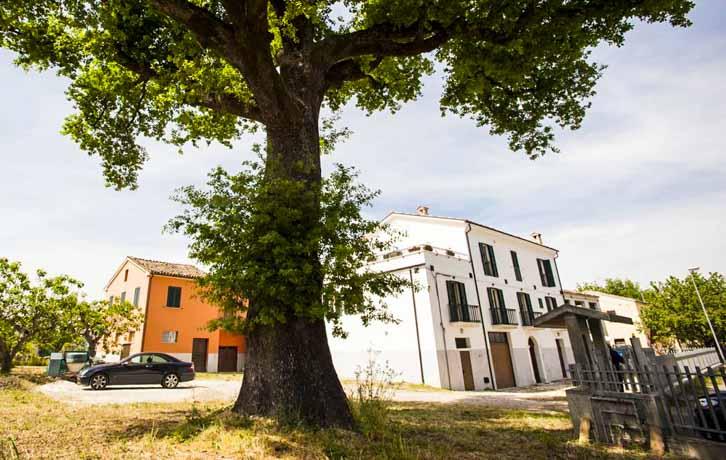 Gran Sasso White charmante vakantiehuizen in Colledara