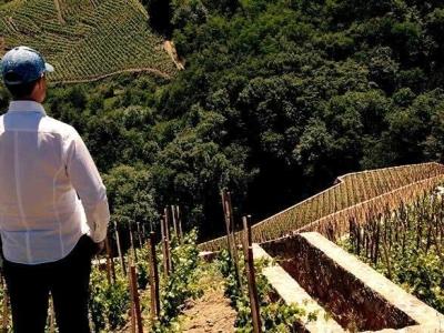 Klaas de Jong maakt nieuwe film documentaire Winemasters in Italië