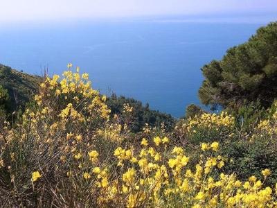 Het wandelpad der mysteriën naar Monte Croce bij Bogliasco