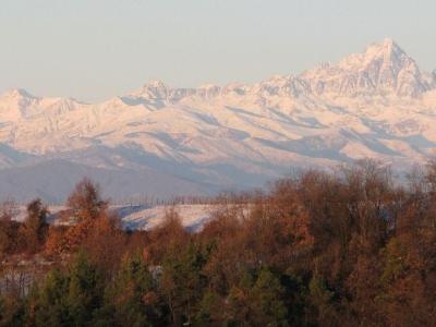 Alta Langa - Het eerste wat je ziet: de bergtoppen - Karin Stubbé