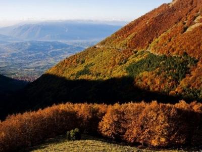 Het najaar in Italië tussen truffels en rijpende druiven