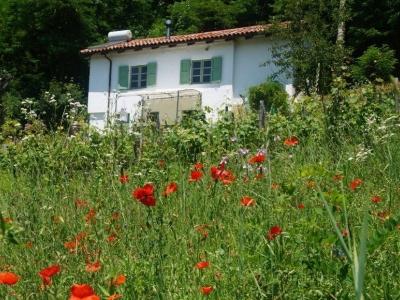 Casa Vigna, wakker worden tussen de druiven in Piemonte