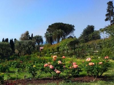 De parken van Nervi, de grootste aan de Middellandse zeekust