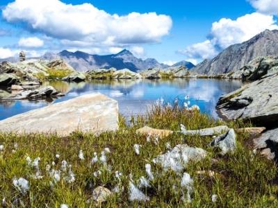 Nationaal Park Gran Paradiso in Aosta