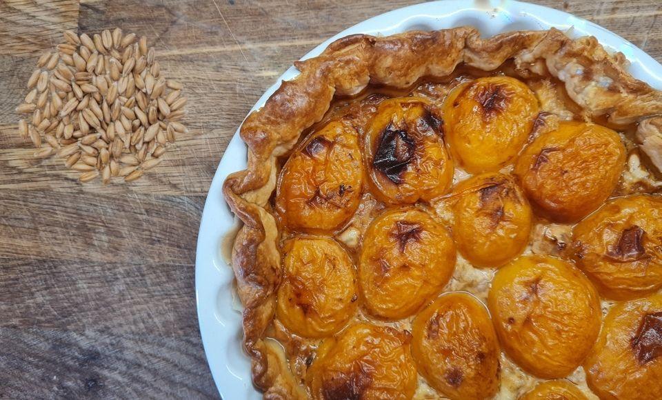 Taart 'Farro Perlato' met abrikozen en ricotta