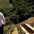 Klaas de Jong maakt nieuwe film documentaire Winemasters in Italie