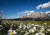 Alta Badia | Voor fietsers die iets bijzonders willen