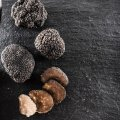 Italiaanse truffels 1.01