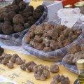 Truffelbeurzen, sagras en markten in Italie