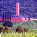 Wijn en architectuur in Toscane