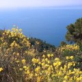 Het wandelpad der mysterien naar Monte Croce bij Pieve Ligurie