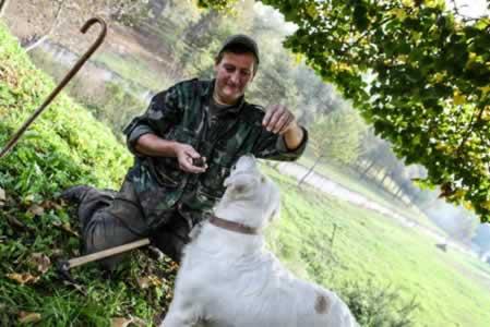 Truffels zoeken met de hond in Piedmonte