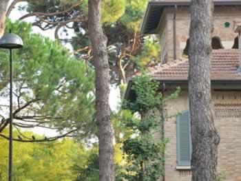Pinarella: rustige lanen met pijnbomen, perfect voor families