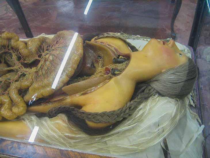 Anatomische les in het Specola museum van Florence