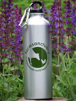 Eco-friendly navulbare fles