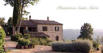 Plantation Sante Marie