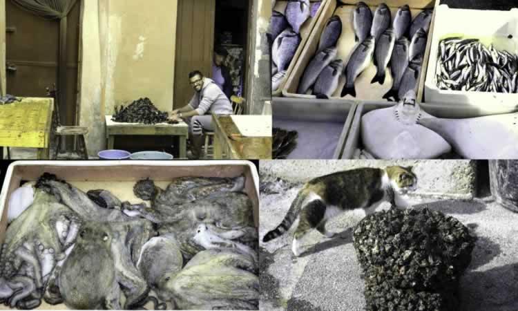 De vismarkt in Taranto