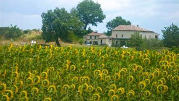I Magnoni, het landgoed van Barend en Annelies