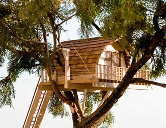 Treetop Builders