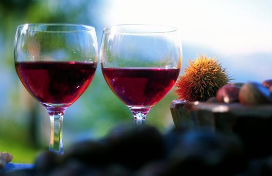 Nieuwe wijn proeven: een eeuwenoude traditie in Zuid Tirol-Alto Adige