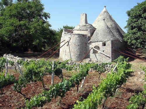 De gouden toekomst van Puglia!