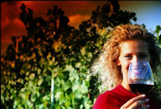 De Wijnoogst Piemonte 2010