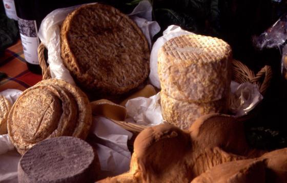 Smaakpaden in Piemonte: Alessandria ontdekken