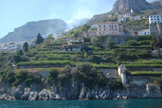 Citroenen, vis en kaas; Amalfi aan tafel.