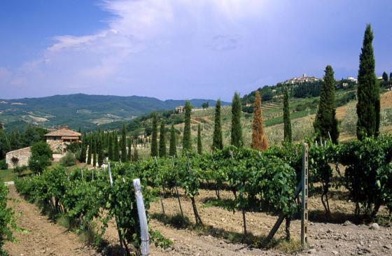 Culinair Toscane deel 2 door Alain Grootaers