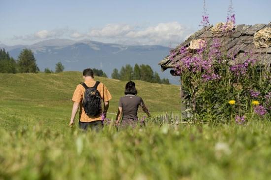 De lente is in 't land in Zuid-Tirol