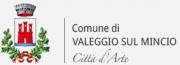 Tourist Information logo