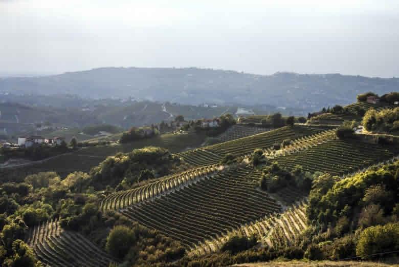 Piemonte   Leuke reisarrangementen en excursies tijdens de Wereld Expo maanden