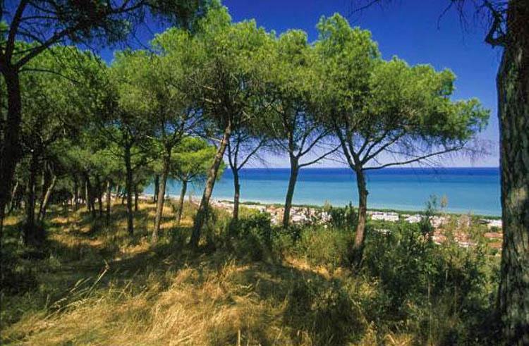 Adriatische kust in Abruzzo