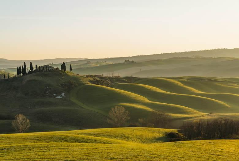 Truffels uit Toscane