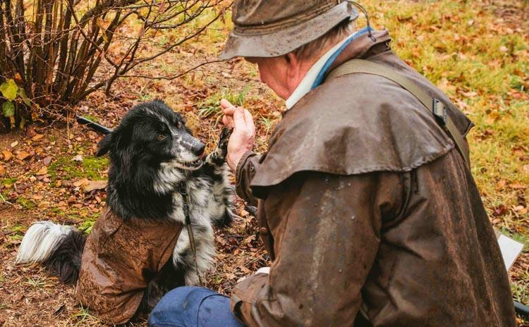 Truffel | High five voor de truffelhond in Umbrië