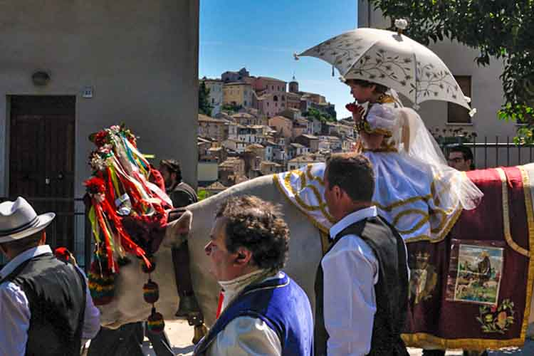 Bibi´s blog: Delicato Delicato, de knielende os van Loreto Aprutino.