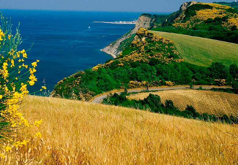 De wilde natuur van Monte San Bartolo in Le Marche