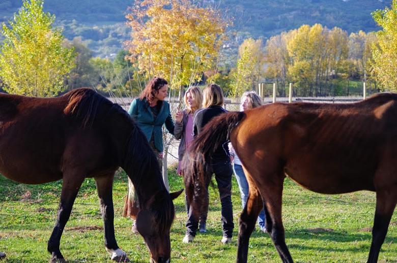 Life coaching sessie met paarden in Italië
